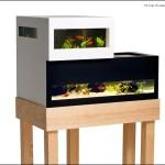 Archiquarium. A Modern Swedish Fish Tank By Karl-Oskar Ankarberg.