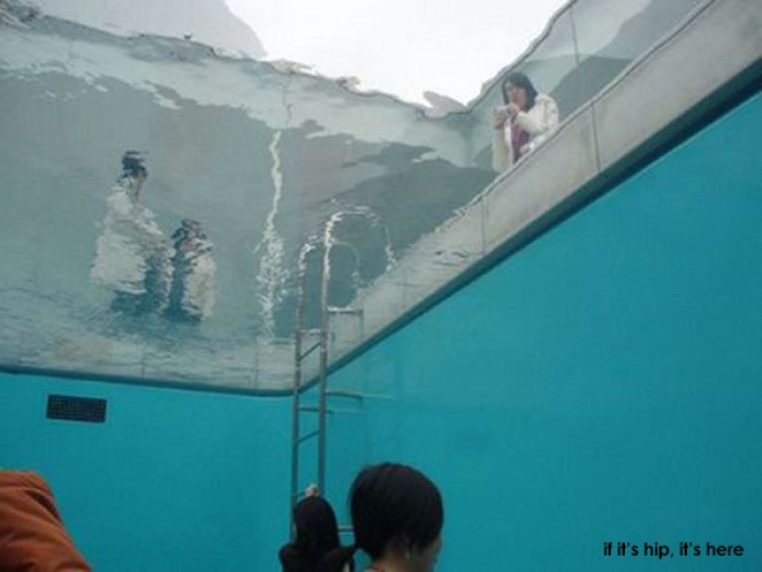 fake pool 14 IIHIH
