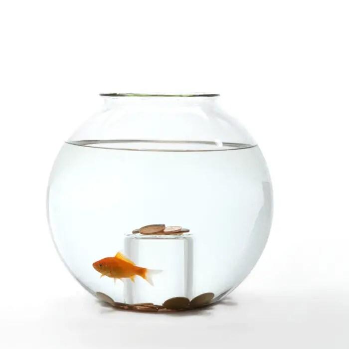 23fishbowl-wishing well