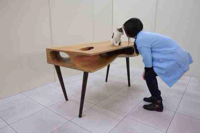 CAT TABLE 11 IIHIH