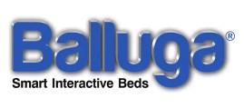 Balluga logo IIHIH