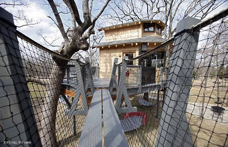 Man Cave Fort Nelson : World's coolest man cave is a treehouse