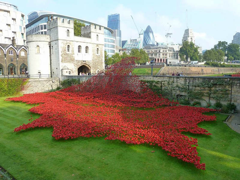 poppies+Blood+Swept+Lands+and+Seas