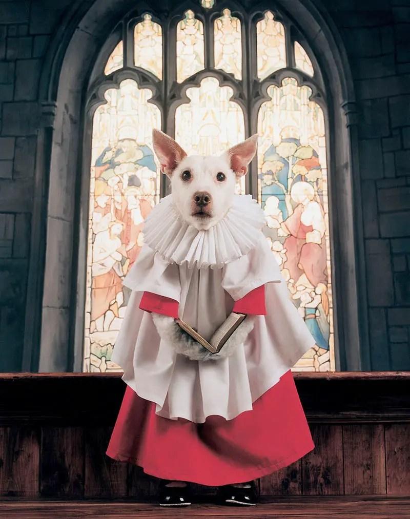 dog as choirboy