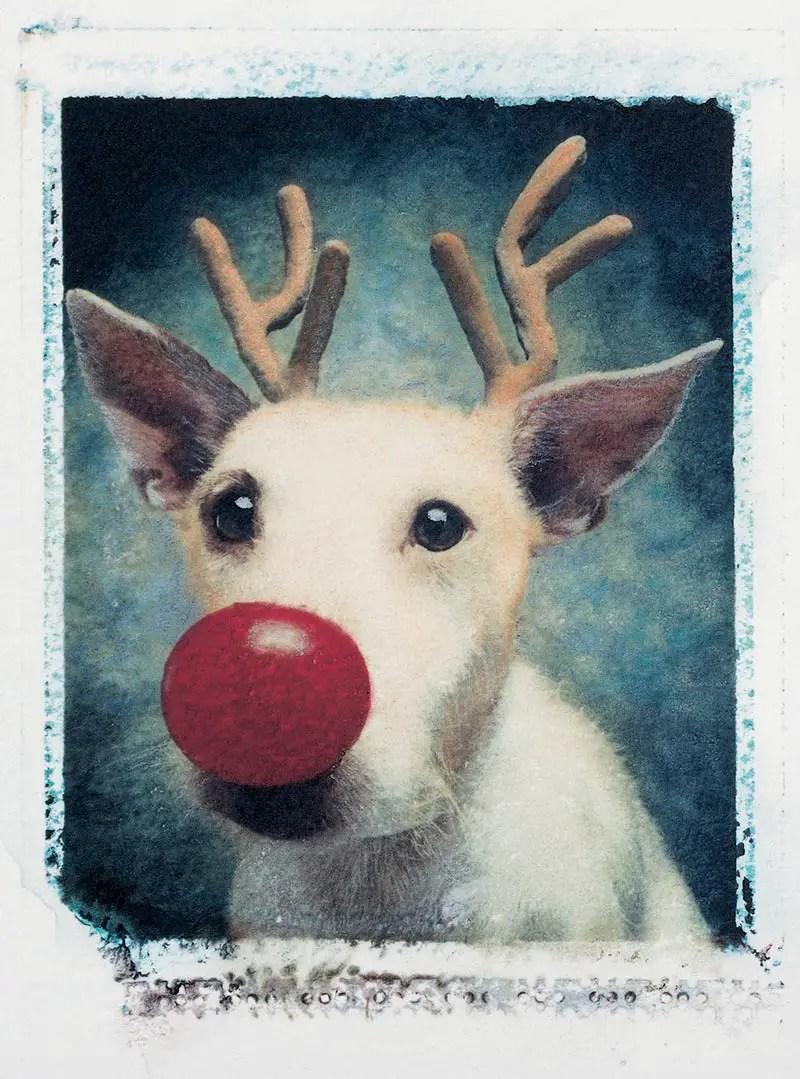 'Rudolph' Paddy 1990 card IIHIH