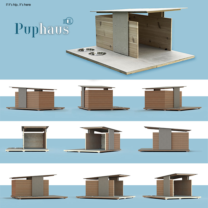 Puphaus renderings from all angles ganged IIHIH