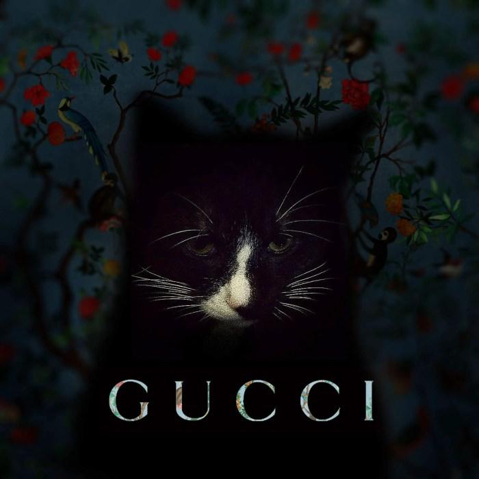 Cheng Ran black cat gucci