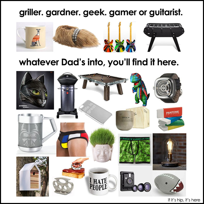 hippest father's day gifts