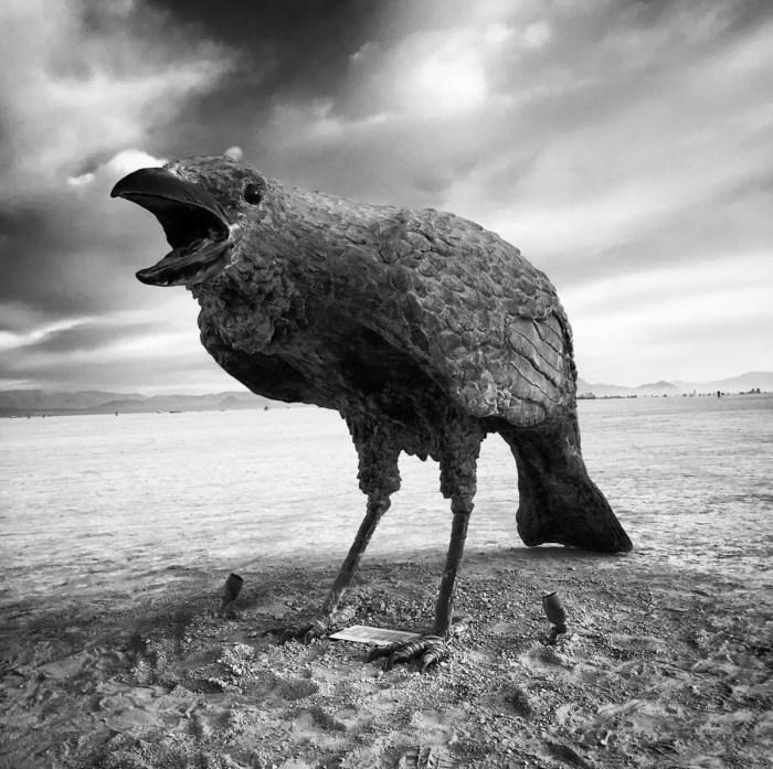 Murder Crow sculptures by Jack Champion