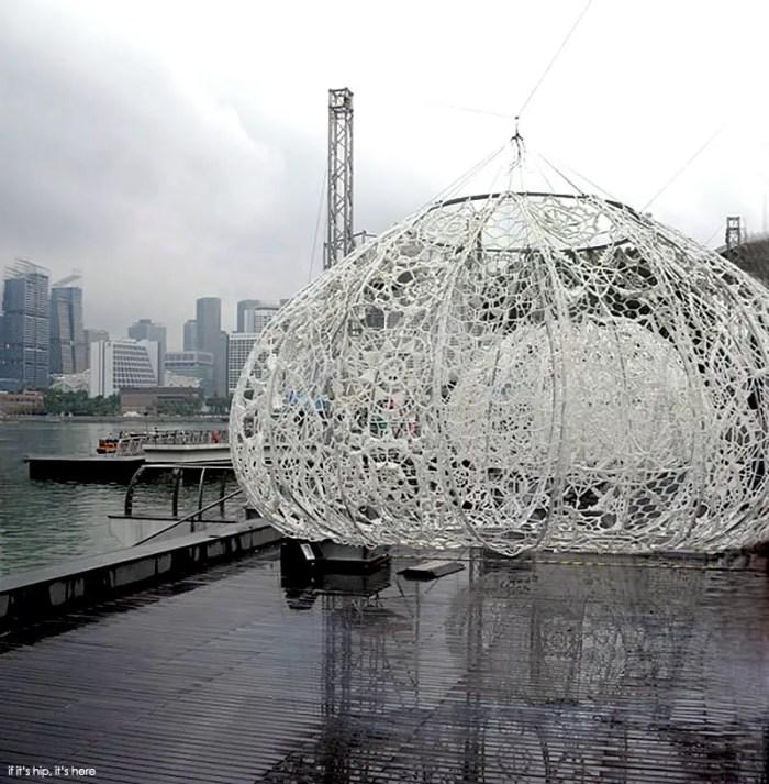 Choi+Shine Architects Giant Lace Urchins