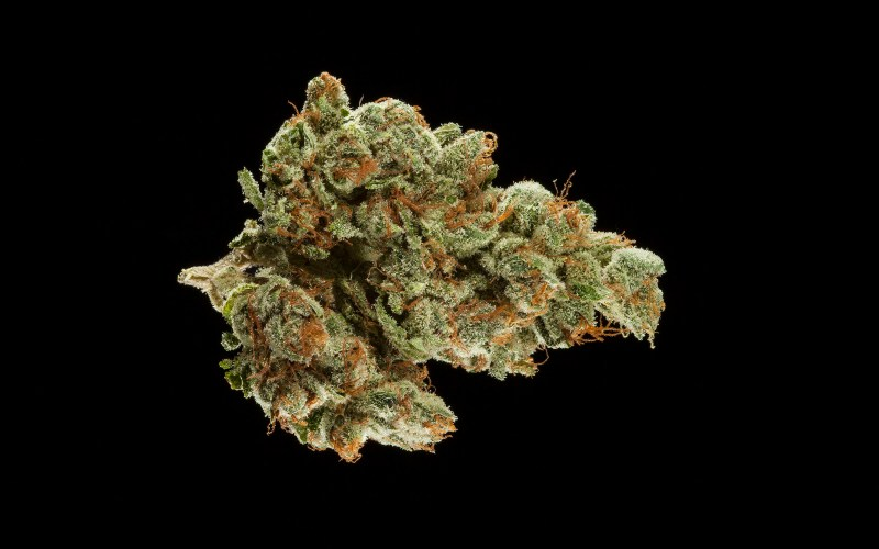 All The Winners From The 2017 SoCal Cannabis Cup – if it's hip, it's