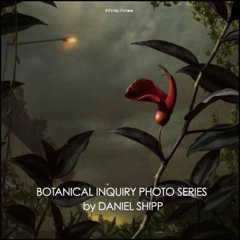 Daniel Shipp Botanical Inquiry