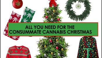 items for the consummate cannabis christmas all from amazon