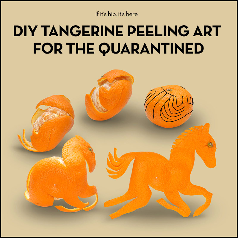 DIY tangerine peeking art