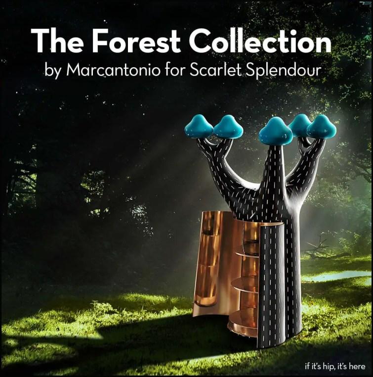 scarlet splendour forest collection