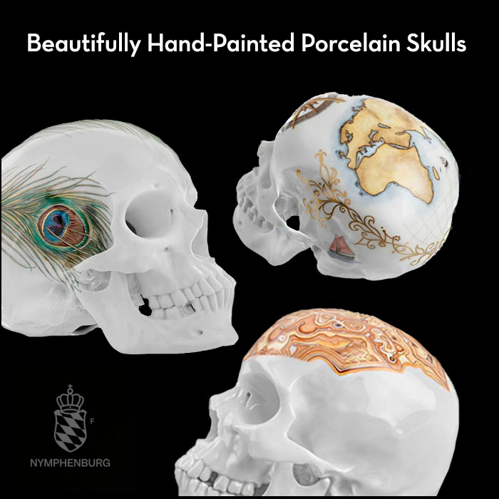 Read more about the article Hand-painted Porcelain Skulls from Nymphenburg