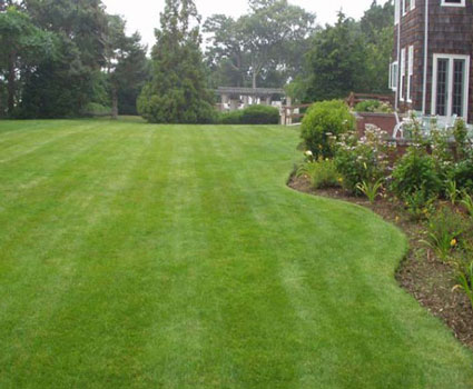 lawn maintenance columbia