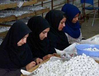 ifmat - Breadwinner Women, the Victims of Indigence and Discrimination in Iran