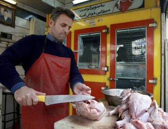 ifmat - Meat crisis in Iran continues