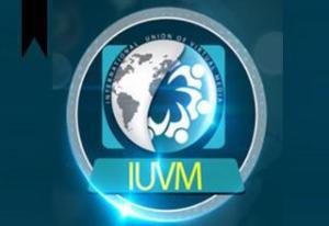 International Union of Virtual Media
