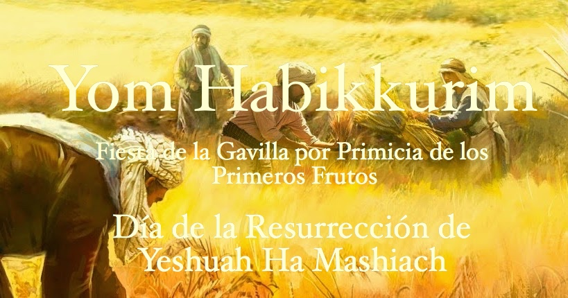 DÍA DE LA RESURRECCIÓN DE YESHUAH… YOM HABIKKURIM