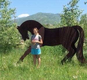 Horse WX
