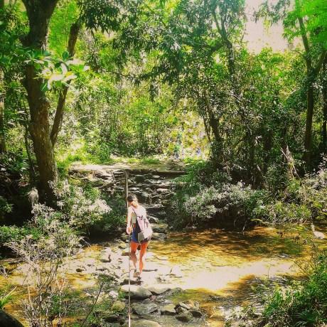 La-natura-nei-pressi-della-bella-Trinidad
