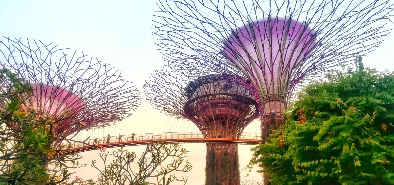 Cosa vedere a Singapore in 36 ore