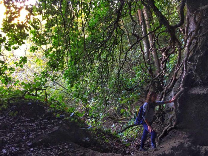 escursioni poesie di natura
