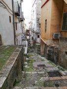 Carpino-Vicoli