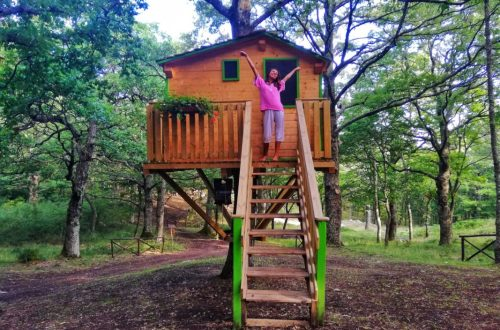 dormire-casa-sugli-alberi