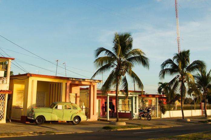 palma reale cubana simbologia