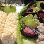 Romaine and Chicken Salad Wrap – 4PPV