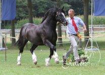 Foto Tierfotografie Jandke (43)
