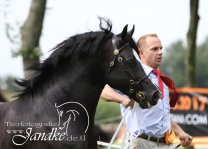 Foto Tierfotografie Jandke (44)