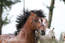 Foto Tierfotografie Jandke (45)