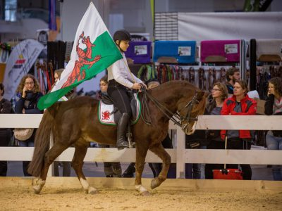 IG Welsh Pferd & Jagd 2016 (3)