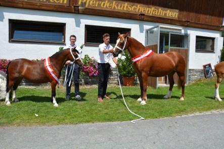 Tagessiegerin MY Chanell mit Mario Krepper und Tagesreservesiegerin Ruska Scarlet Rose mit Mario Anker (2)