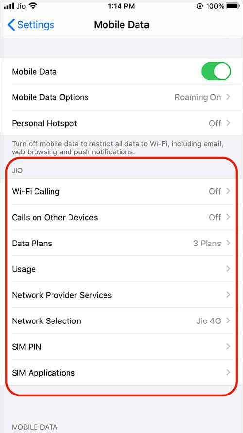 Проверьте опцию в мобильных данных для пользователей Jio на iPhone