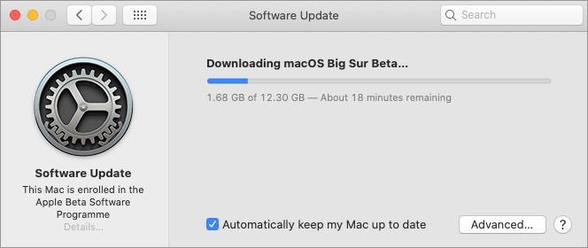 скачать публичную бета-версию macos big sur mac