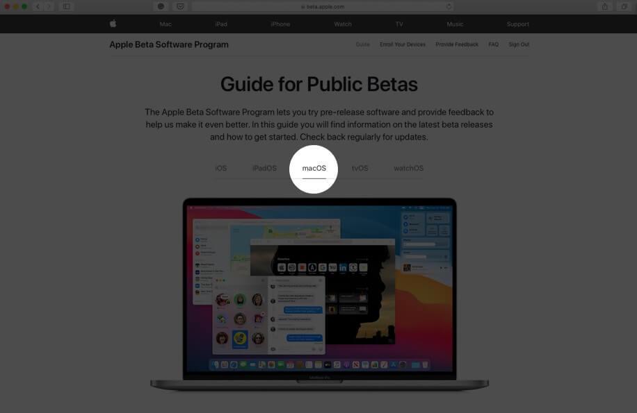 на экране общедоступных бета-версий выберите вкладку MacOS
