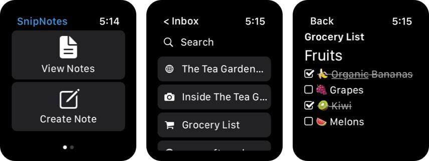 Скриншот приложения SnipNotes для Apple Watch