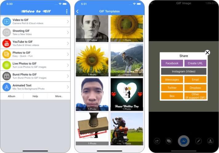 Видео в GIF - Скриншот приложения GIF Maker для iPhone и iPad
