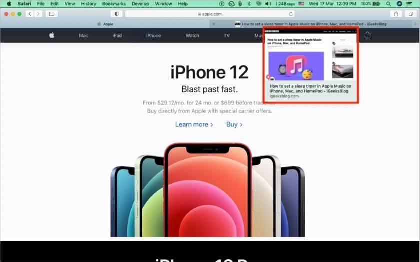 Как выглядит предварительный просмотр вкладки Safari в macOS