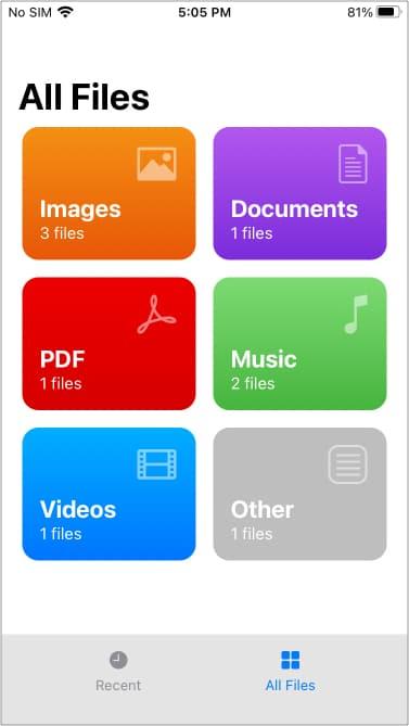 Файлы из приложения WALTR, запущенного на iPhone