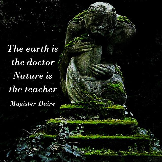 Magister Daire Traditional Medicine