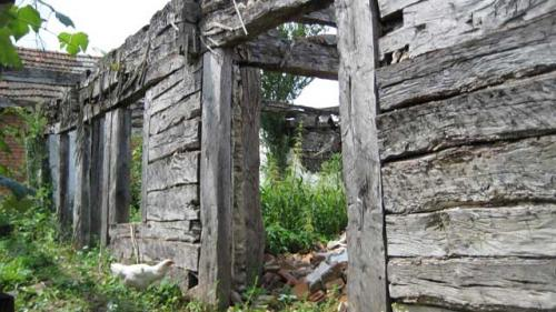 Proiect pentru restaurarea casei părintești a lui Brâncuși
