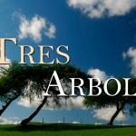 Tres árboles sueñan