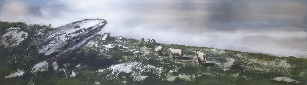 zinc, aluminio, vacas. Cantabria Asturias