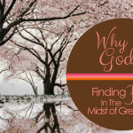 Why God? Finding Hope In The Midst Of Great Loss